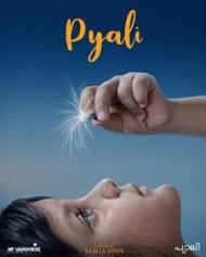 Pyali