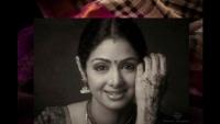 Sridevi's Saree Put Up For Auction By Boney Kapoor