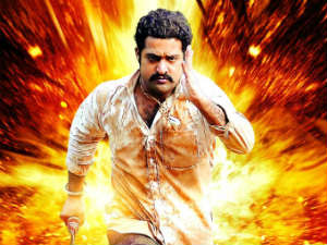 Jr NTR in Dammu