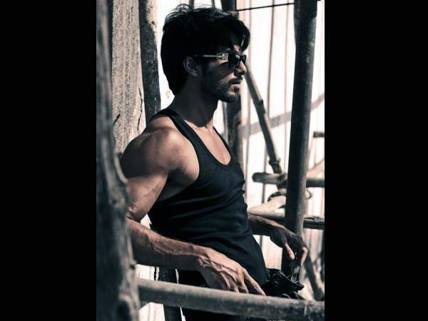 Shahid Kapoor's Twitter Picture