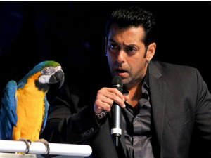 BB 6: Salman announces 15 contestants