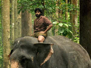 Kumki off to a flying start at Box Office