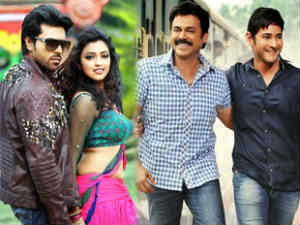 SVSC, Naayak second weekend collection