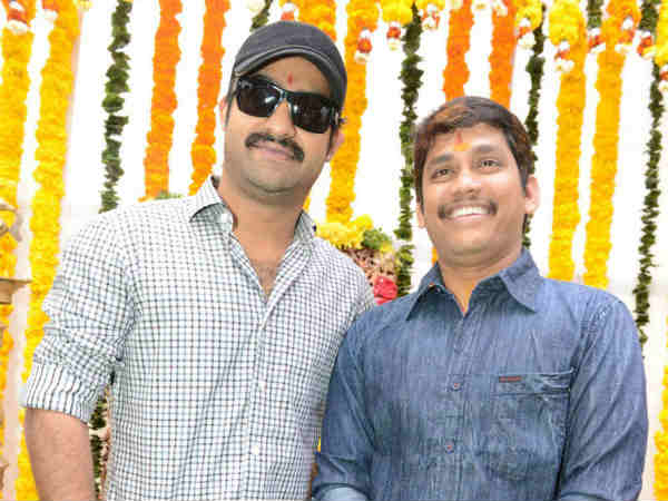 Jr NTR's New Film Rabhasa Launch