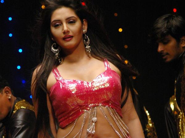 Ragini Dwivedi's Item Number Gets Good Response