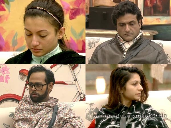 Gauhar, Armaan, Tanisha And Andy