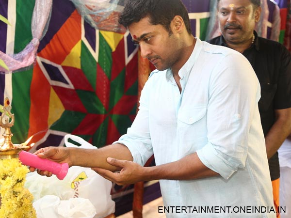 Picture: Surya Lighting A Lamp