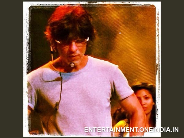 Shahrukh Khan At Abu Dhabi