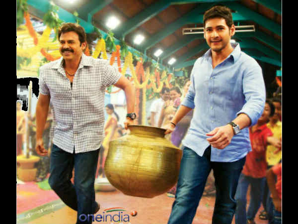 SVSC - First Week Collection