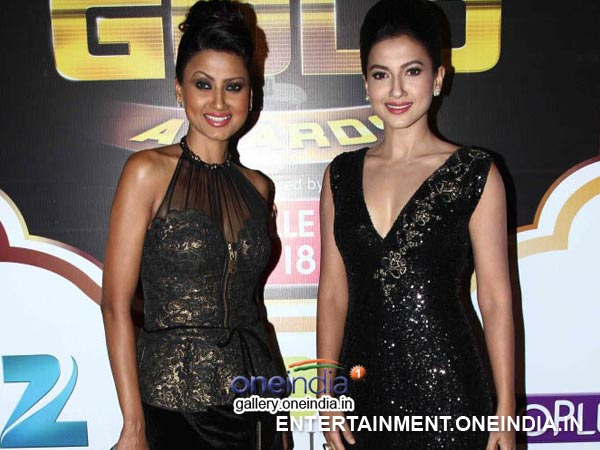 Zee Gold Awards 2014