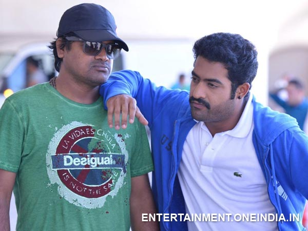 Harish Shankar's Birthday Wishes To Junior NTR