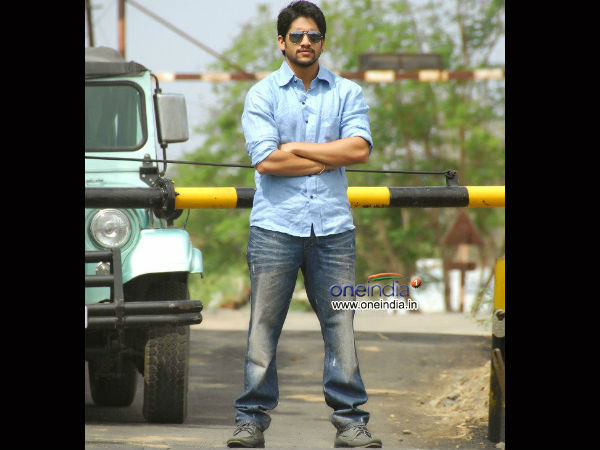 Naga Chaitanya's Height
