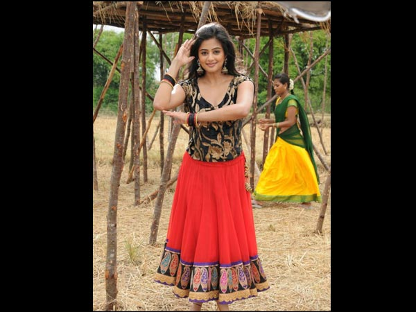 Tamil Actress Priyamani's Height