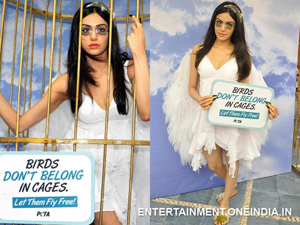 Adah Sharma In PETA Ad