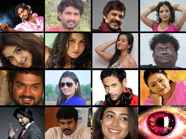 Bigg Boss Kannada 2: Know About Contestants - Filmibeat
