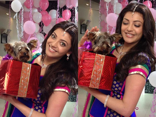 Kajal Aggarwal's Pet Dog