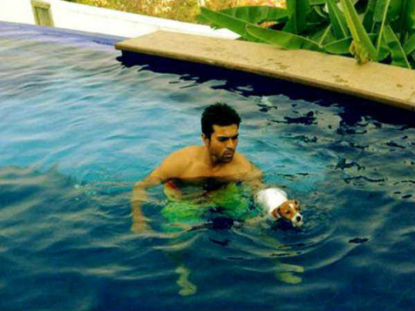 Ram Charan Teja's Pet Dog