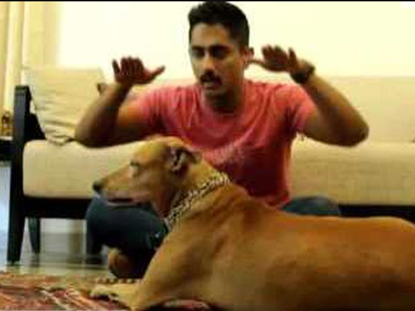 Siddharth's Pet Dog