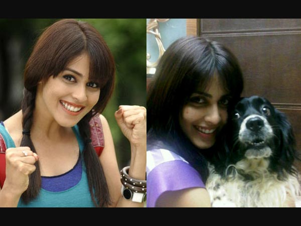 Genelia D'Souza's Pet Dog
