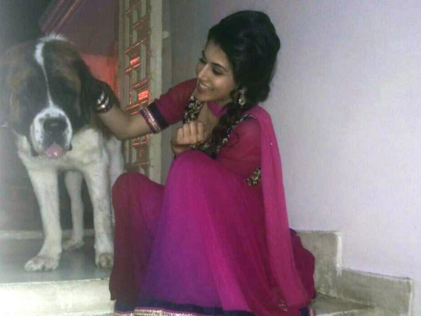 Taapsee Pannu's Pet Dog