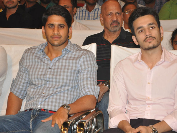 Naga, Akhil At Manam 50 Days Success Meet