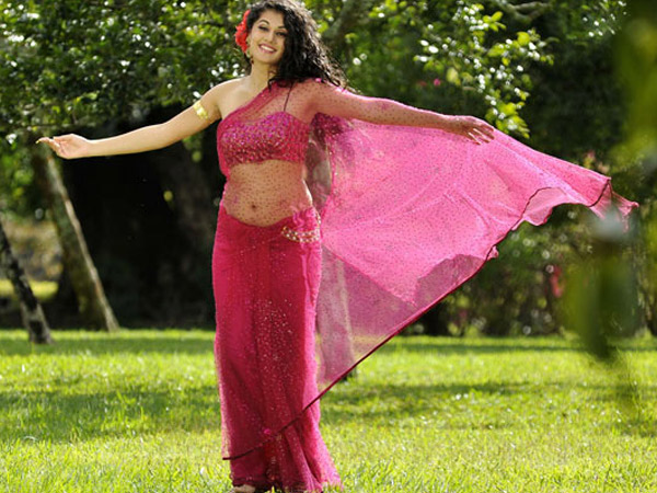 Taapsee In Sheer Pink Saree