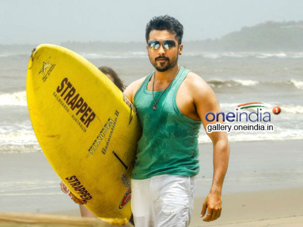 Cool & Calm Surya