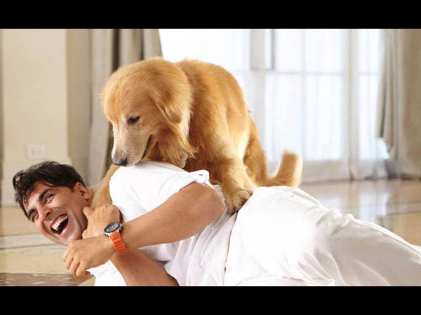 Akshay Kumar: We Shot Entertainment With 100 Dogs, No Graphic
