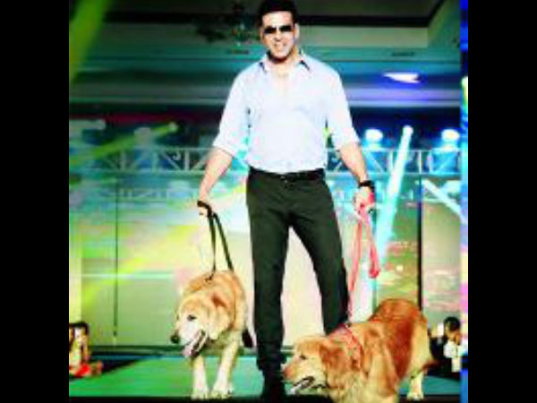 Akshay Kumar Walks The Ramp With His Dogs