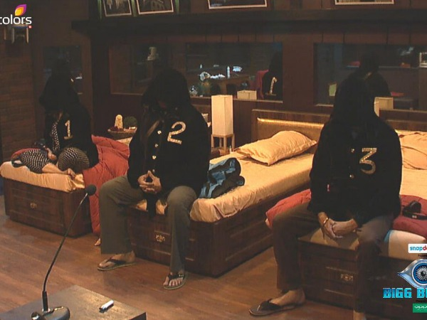 Bigg Boss 8: Who Are The 3 Secret Society Captains?