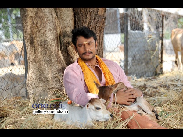 Shivaraj Kumar Vs Darshan At The Box Office