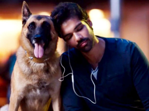 Naaigal Jaakirathai Movie Review: Idoh The Dog Steals The Show