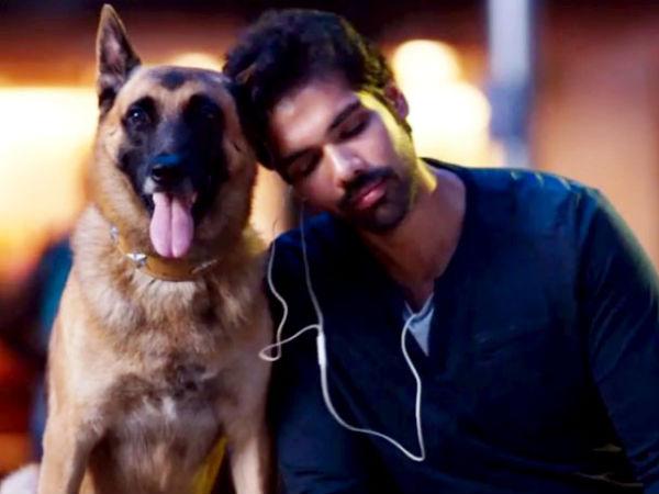 Naaigal Jaakirathai Review | Naaigal Jaakirathai Movie ...
