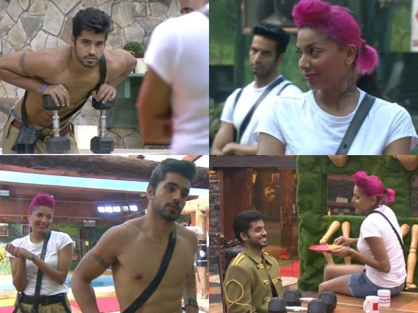 Gautam And Diandra Are Faking It On Bigg Boss 8: Nigaar Khan