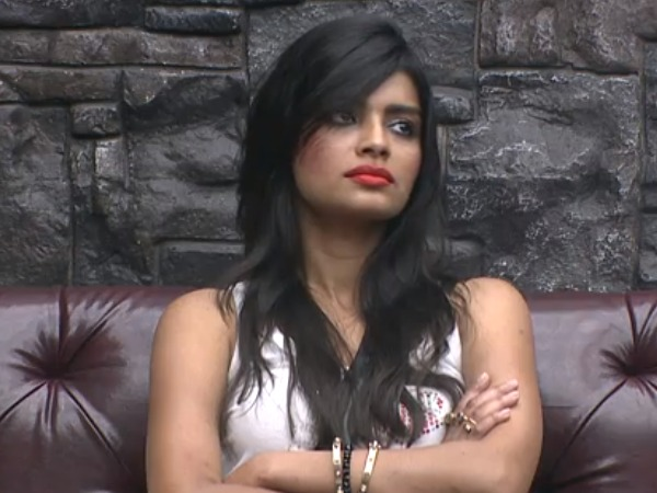 Sonali Raut Nominated Forever On Bigg Boss 8 For Slapping Ali!