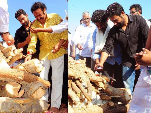 Father Harikrishna And Brother Jr. NTr Paying Their Respect To Janaki Ram