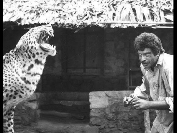 With Terrific Co-star (Leopard)