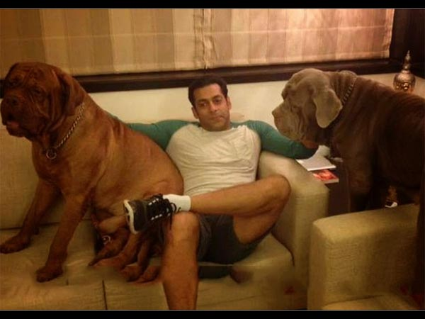 Salman With His Dogs