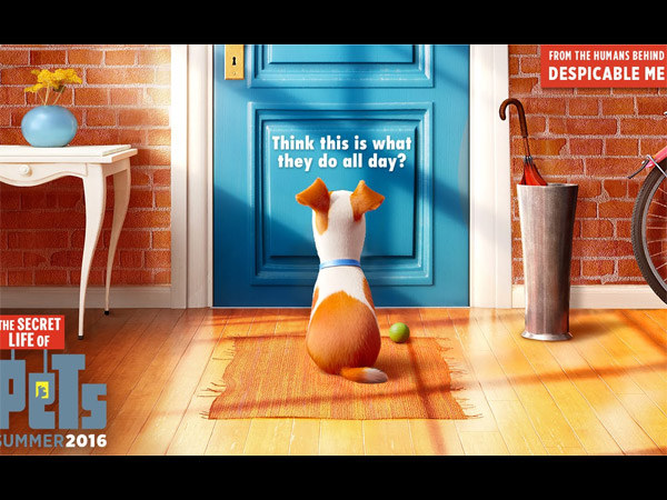 The Secret Life of Pets- July 8, 2016