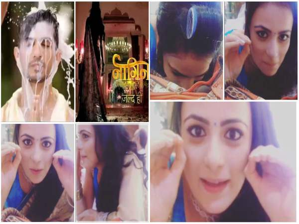 This Image Of MATSH's Radhika Madan Wishing Arjun Bijlani For Naagin Will Make You LOL
