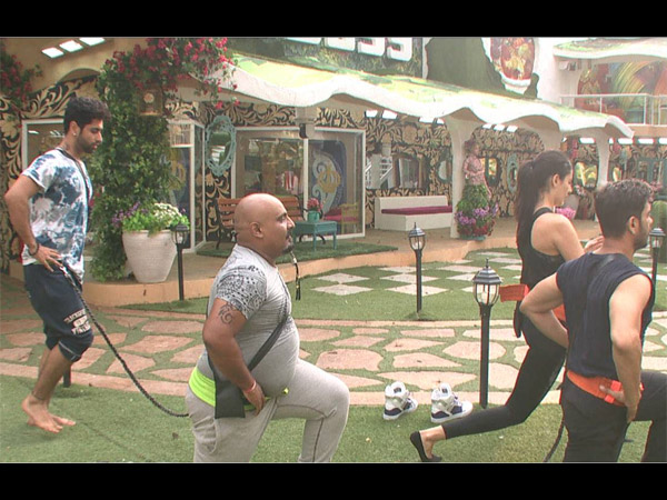 Yoga In Bigg Boss House