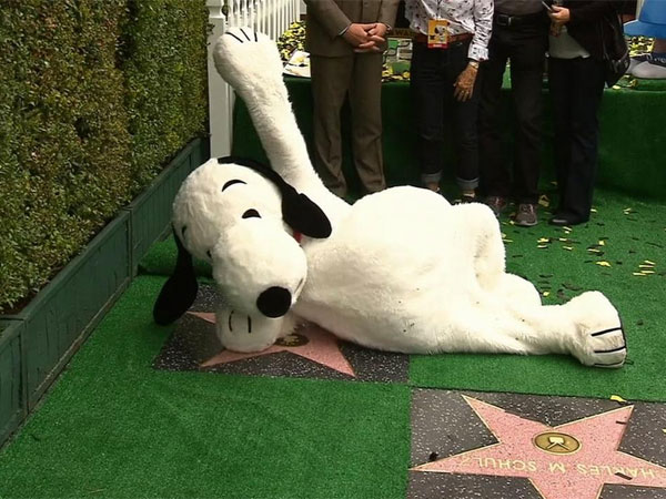 Wow! Snoopy's Star On Hollywood Walk Of Fame