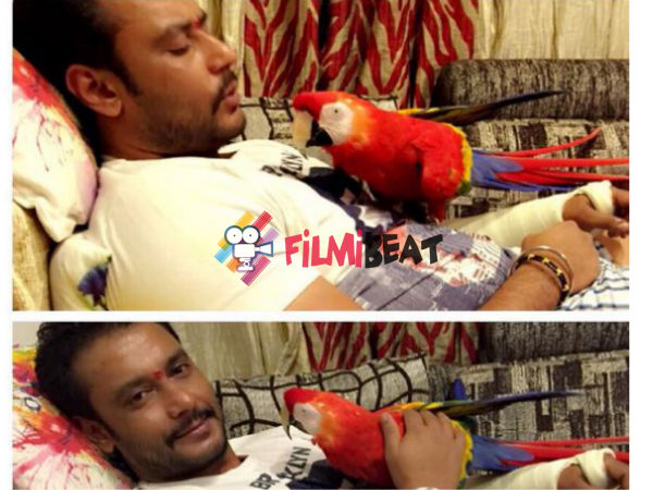 Challenging Star Darshan's New Addiction From South America!