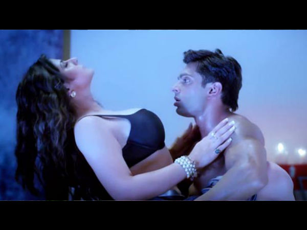 Hate Story 3 Budget
