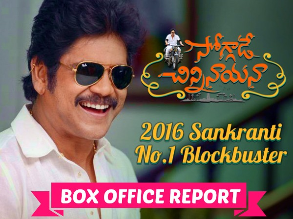 Soggade Chinni Nayana Emerges As A Clear Winner, Beats Balakrishna's Dictator