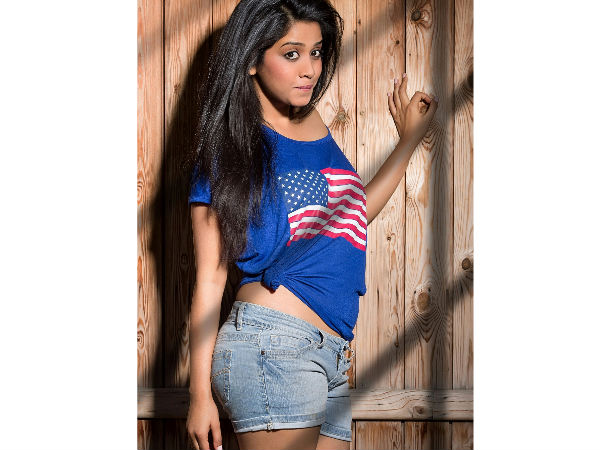 Success Of Vajrakaya, Nabha Natesh To Debut In Tollywood!