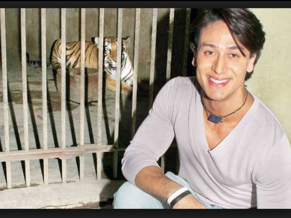 Tiger Shroff With Tiger International Tiger Day