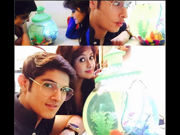 Rohan's Gift For Kanchi