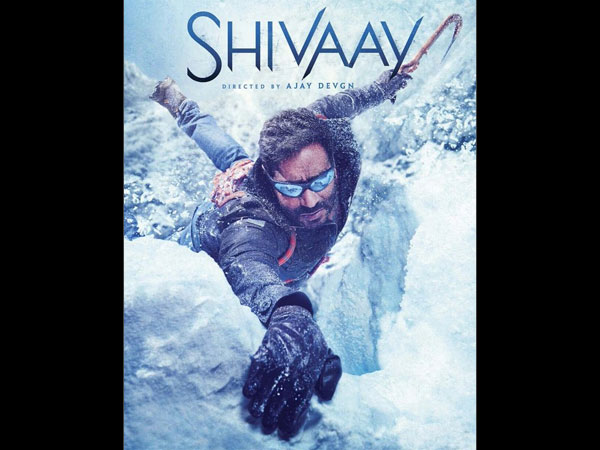 Ajay Devgn's Shivaay Box Office Prediction Report