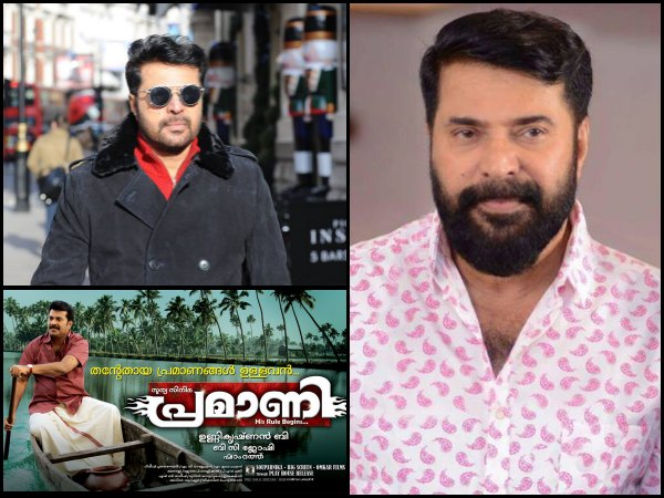 Mammootty Movies That Were Disappointments But Had The Actor In Full-form!